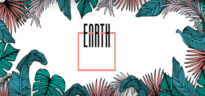 Earth Café Cork