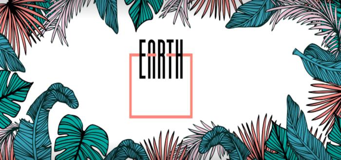Earth Café Cork