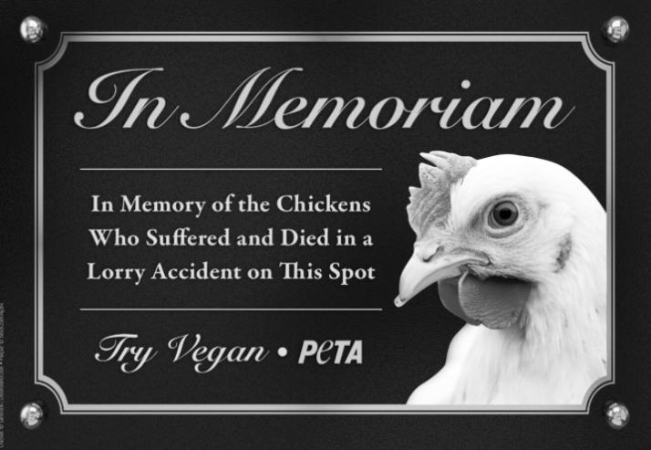 chickens waterford vegan