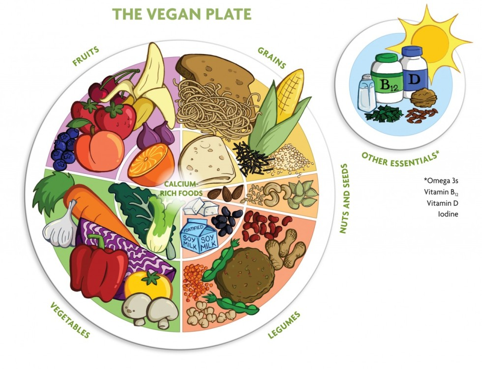 the vegan plate
