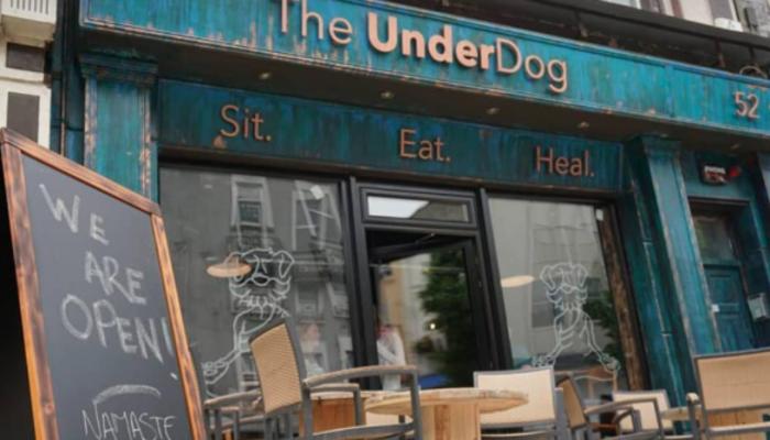 The Underdog Ireland